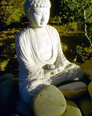 bouddha-photo-libre-1.jpg